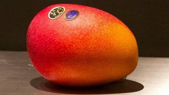 تعرف على أغلى وأغرب أنواع الفاكهة في العالم